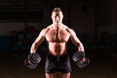 Indivíduo muscular do halterofilista que faz exercícios com pesos fotos de stock royalty free