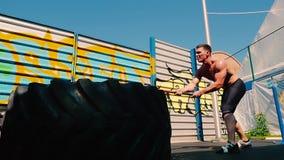 Indivíduo novo com o treinamento desencapado do torso para bater o pneu de borracha com martelo video estoque
