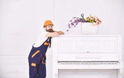 Indivíduo pensativo que inclina-se na parte superior do piano branco do vintage com o vaso de flor de vidro no fundo branco beard fotografia de stock