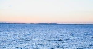 Indivíduo que rema no oceano fotos de stock royalty free
