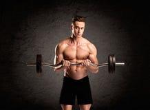 Indivíduo 'sexy' do elevador de peso que mostra os músculos imagens de stock royalty free