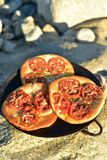 Individual baked tomato foccacia bread. Individual serving size baked focaccia bread on rocky seashore in Baja Mexico Stock Photography