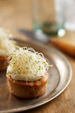 Individual carrot cake with sprouts Stock Images