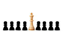 Individual chess people Royalty Free Stock Photo