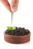 Individual chocolate cake Royalty Free Stock Photos