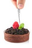 Individual chocolate cake Royalty Free Stock Photography