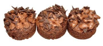 Individual Chocolate Sponge Cakes Stock Image
