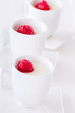 Individual cupped panna cotta with berry fruit Royalty Free Stock Photography