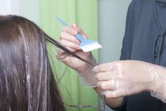 An individual entrepreneur provides services at home. The hairdresser paints the hair of a woman. Brush the paint on the strands Stock Photography