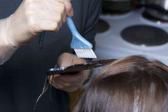 An individual entrepreneur provides services at home. The hairdresser paints the hair of a woman. Stock Photo