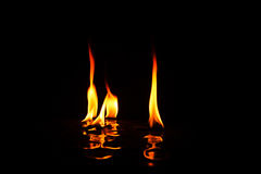 Individual flames of fire with reflection Royalty Free Stock Photos