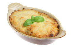 Individual Lasagna Stock Photography
