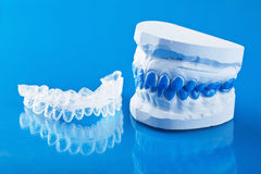 Individual tooth tray for whitening and mold Royalty Free Stock Image