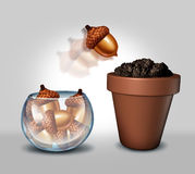 Individualism Freedom. Individualism and freedom concept as a glass bowl containing a group of acorn seeds with one individual seed jumping out and into a flower stock illustration