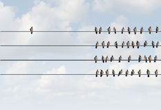 Individuality Symbol. And independent thinker concept and new leadership concept or individuality as a group of pigeon birds on a wire with one individual bird Royalty Free Stock Image