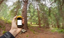 Individuazione della posizione giusta nella foresta via i gps Fotografia Stock Libera da Diritti