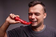Individuo divertido que come la pimienta de chile rojo en un fondo gris Hombre hermoso con picante, pimiento picante Concepto del foto de archivo