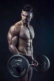 Individuo muscular del culturista que hace ejercicios con el dumbb grande de la pesa de gimnasia fotografía de archivo libre de regalías
