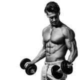 Individuo muscular del culturista que hace ejercicios con pesas de gimnasia Imagen de archivo libre de regalías