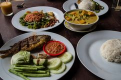 Indo food: Kankung plecing spicy water spinach dish, Ikan goreng fried fish and kare curry.  Stock Image