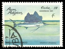 Indo Pacific Sailfish. Cuba - stamp 1981, Edition Marine Fauna, Fish, Series Sea fishes, Indo Pacific Sailfish, Istiophorus platypterus Royalty Free Stock Images