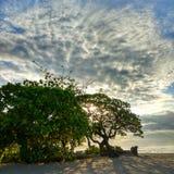 Indomesia του Μπαλί φύσης παραλιών ηλιοβασιλέματος Στοκ εικόνα με δικαίωμα ελεύθερης χρήσης