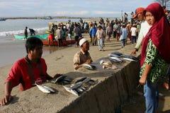 Indonésia: Pescador em Aceh Imagens de Stock Royalty Free