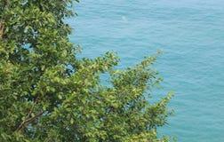 Indonésia: Vista do mar e das árvores em Aceh Imagem de Stock Royalty Free