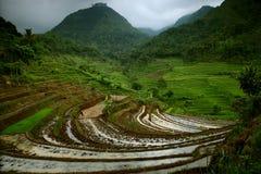 indonesië Stock Afbeeldingen