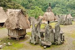 Indonesië, Flores, dorp Bena royalty-vrije stock foto