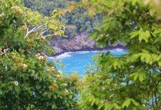 Indonesië: Mening van overzees en bomen in Aceh Stock Foto