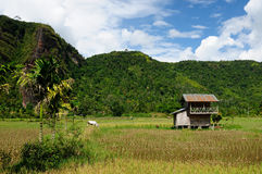 Indonesia countryside. Harau valley Stock Photography