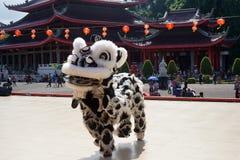 indonesia El funcionamiento de Dragon Dance durante la celebración china del Año Nuevo Foto de archivo