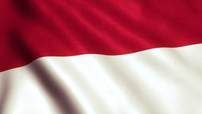 Indonesia Flag Animation Video - 4K