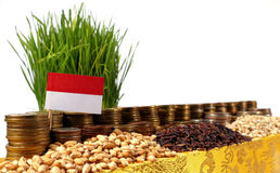 Indonesia flag waving with stack of money coins and piles of wheat Stock Images