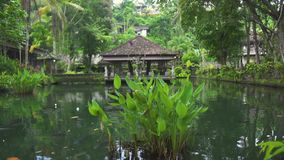 Indonesia god statue in water pond at Bali temple, Indonesia. Traditional indonesian hindu symbol. Ancient sculpture. Religious idol. Balinese spiritual stock video footage