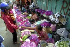 INDONESIA INFLATION FEBRUARY. A flower market in Solo, Java, Indonesia. Indonesia's inflation slowed further in February, official data showed Monday (Mar 2) Royalty Free Stock Images