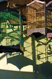 Indonesia, Java: jaulas de pájaro Fotografía de archivo