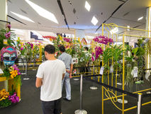 Indonesia orchid chalenge 2014 in bangkok Royalty Free Stock Image