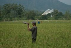 INDONESIA RICE PRODUCTION NEW TARGET Stock Image