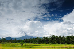 Indonesia - rural landscape Stock Images