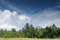 Indonesia - rural scene in Jawa Stock Photography