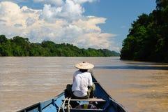 Indonesia - selva tropical en el río, Borneo imagenes de archivo