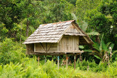 Indonesia - Traditional Dayak tribal culture. Traditional Dayak tribal culture. Modern Dayak house - in the jungle. East Kalimantan, Indonesia, Borneo Royalty Free Stock Image