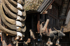 Indonesia, Traditional village Royalty Free Stock Photo