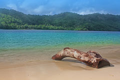 Indonesia tropical beach Stock Image