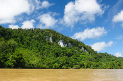 Indonesia - Tropical jungle on the river, Borneo Royalty Free Stock Image