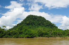 Indonesia - Tropical jungle on the river, Borneo Royalty Free Stock Images
