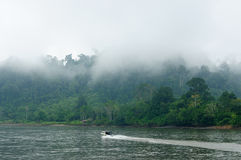 Indonesia - Tropical landscape on the river, Borneo Stock Images
