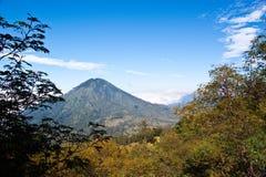 Indonesia Volcano Stock Image